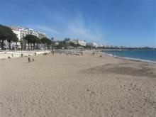 Festival de Cannes – Du 24 février au 3 mars 2013