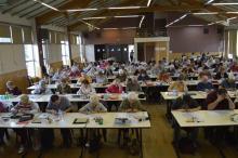 Le Championnat Départemental des Loire (42-43) à Andrézieux-Bouthéon le 21 octobre 17